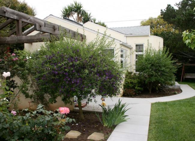 Santa Monica home office, privacy in program, rear yard